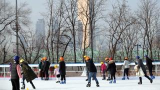 추워도 즐거운 한강…스케이트·철새 관찰 인기