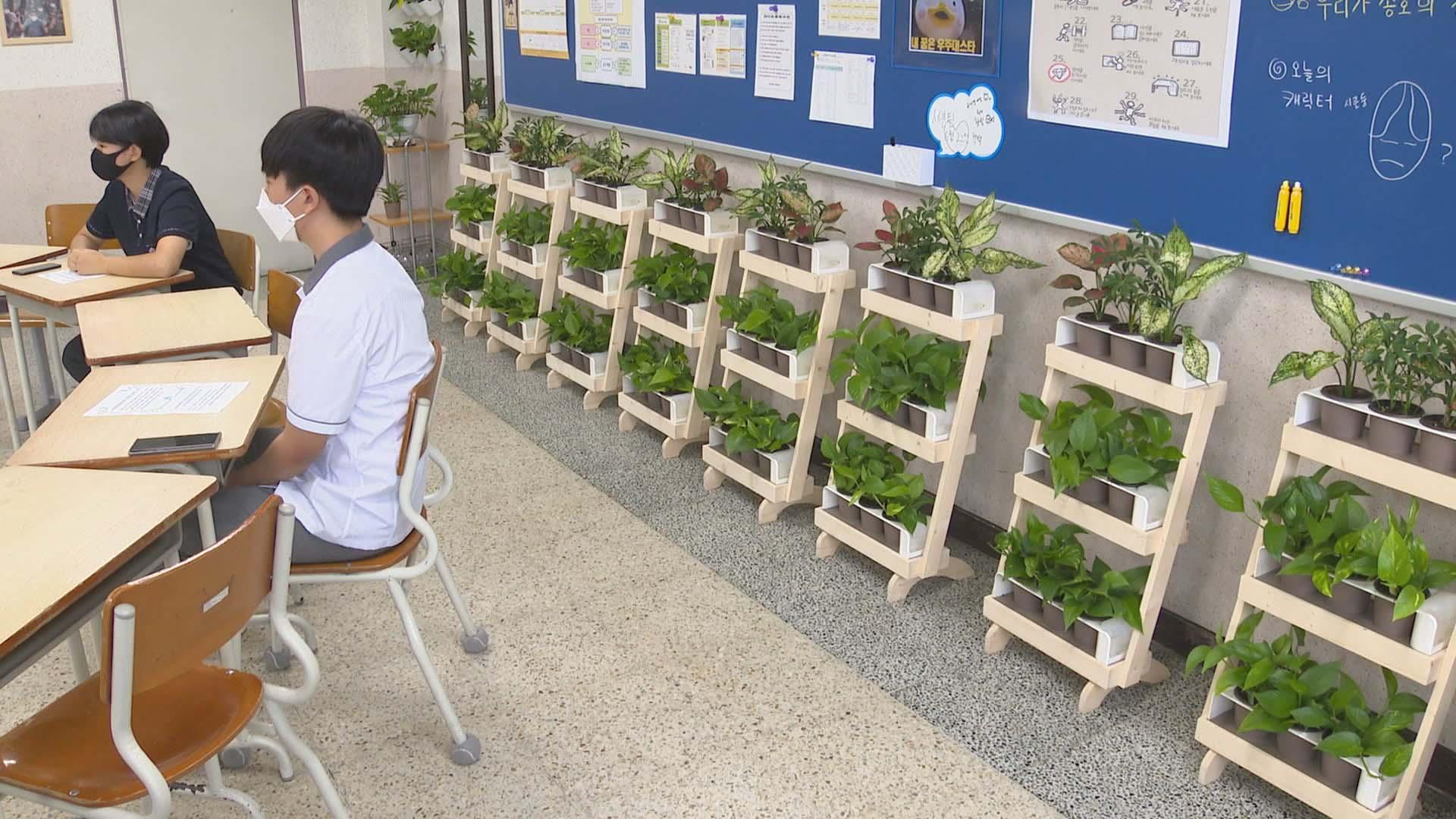 녹색식물 자라는 친환경교실…실내 공기정화는 '덤'