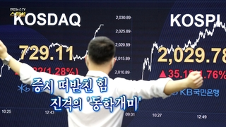 [연합뉴스TV 스페셜] 142회 : 증시 떠받친 힘 진격의 '동학개미'