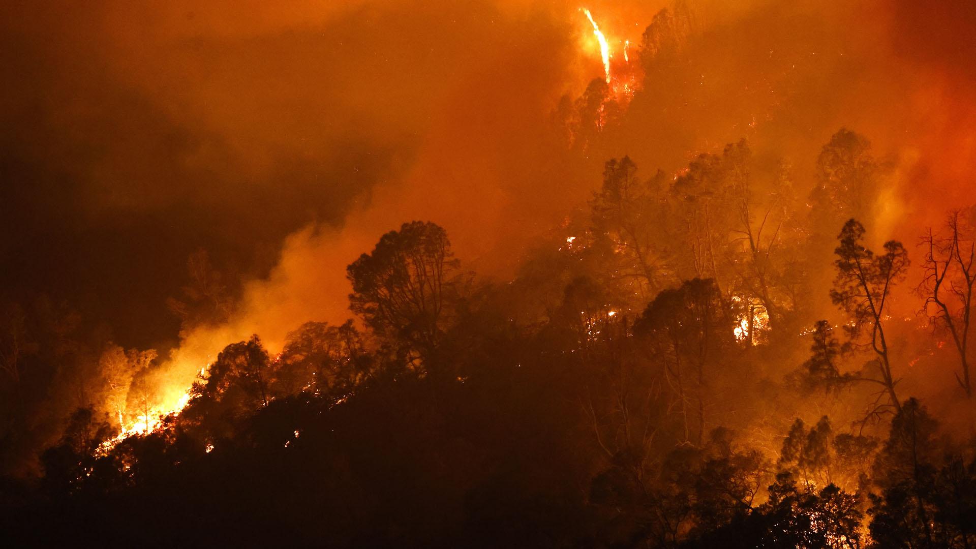 미국 캘리포니아 또 대형 산불…수만 명 긴급 대피