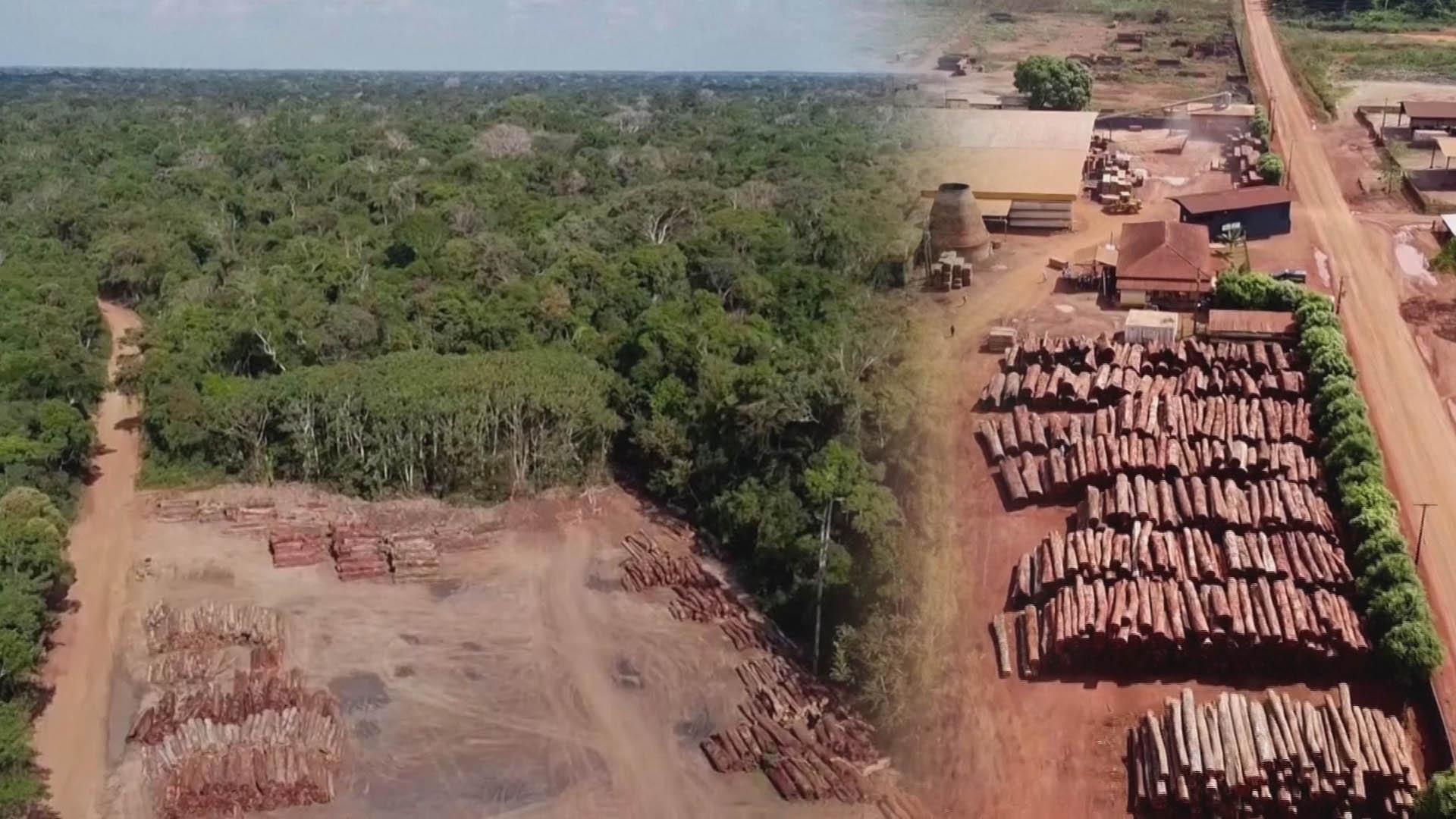 파괴속도 빨라지는 아마존 열대우림…남미 8개국 보호나서