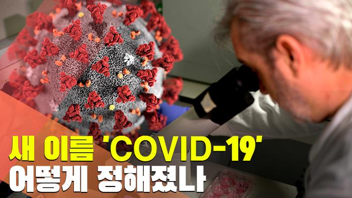 [현장] 신종 코로나 새 이름 'COVID-19' 어떻게 정해졌나?